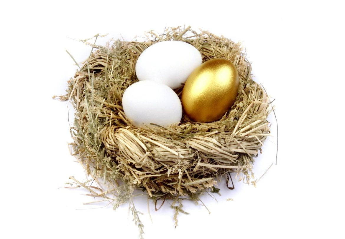 Goose eggs or Golden Eggs?