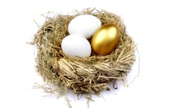Goose eggs or Golden Eggs?