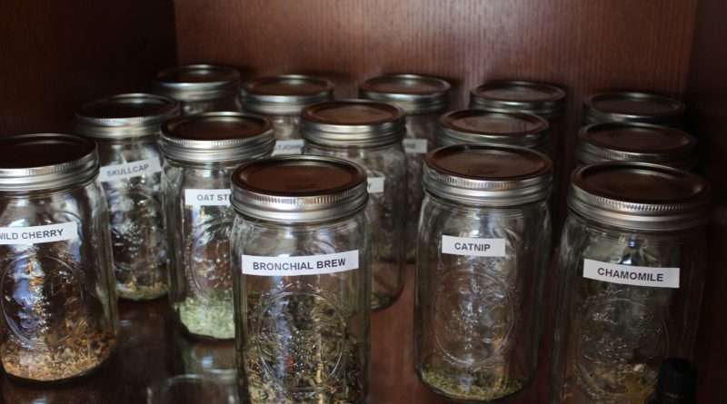 Medical Actions of Herbs — Terminology You Need to Know